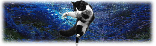 FlyingCat-No-text.png