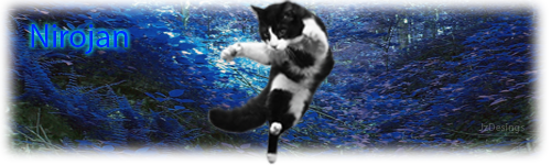 FlyingCatFinished.png