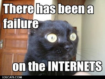 internet-cat-lolcat-courtesy-tonyalmeida_118.jpg